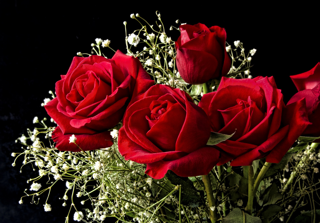 Uk Florists At Same Day Flower Delivery Company Flowers24hours